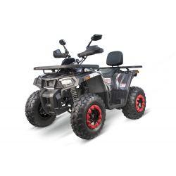 """QUAD Quablo RS10 200cc 10"""""""